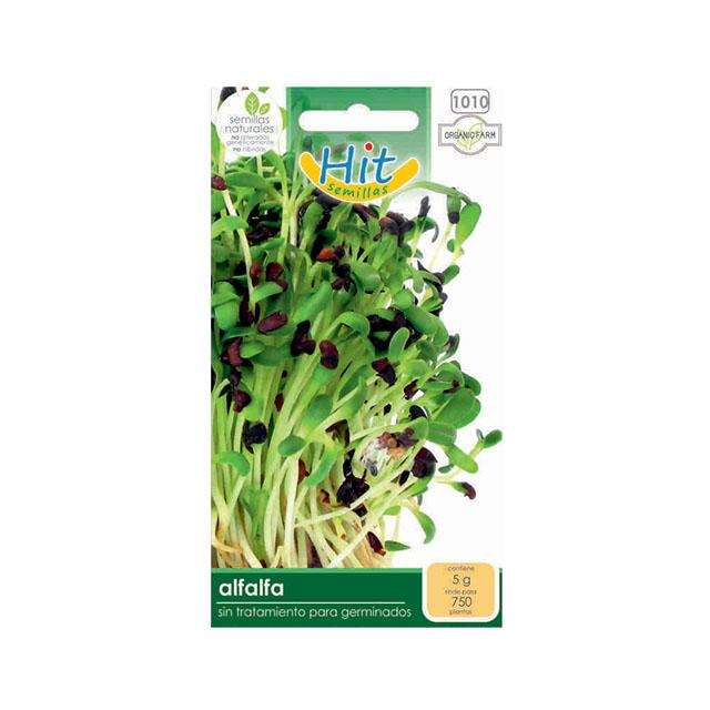 Agropecuaria Marroquín Alfalfa semilla en sobre